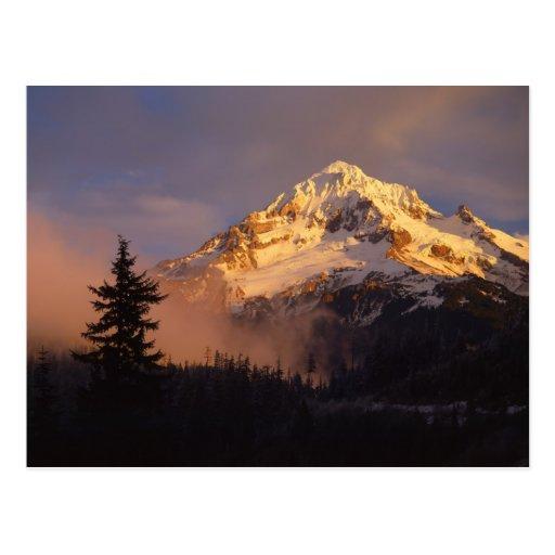 USA, Oregon, Mt. Hood National Forest. Rolling Postcard