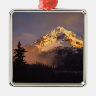 USA, Oregon, Mt. Hood National Forest. Rolling Silver-Colored Square Decoration