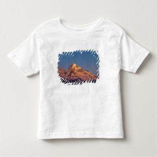 USA, Oregon, Mt Hood. Sunset creates alpenglow Tshirt