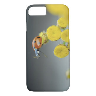 USA, Oregon, Multnomah County. Ladybug on yellow iPhone 7 Case