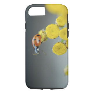 USA, Oregon, Multnomah County. Ladybug on yellow iPhone 8/7 Case