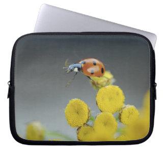 USA, Oregon, Multnomah County. Ladybug on yellow Laptop Sleeve