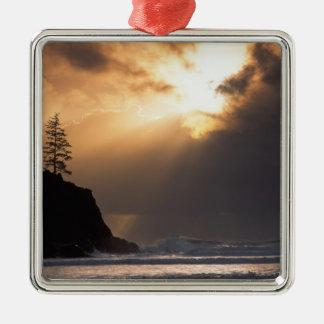 USA, Oregon, near Oswald West State Park, Late Christmas Ornament
