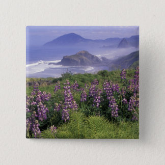 USA, Oregon, Nesika Beach. Lupine and Oregon 15 Cm Square Badge