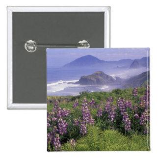USA, Oregon, Nesika Beach. Lupine and Oregon 15 Cm Square Badge