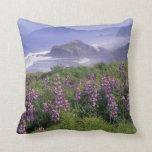 USA, Oregon, Nesika Beach. Lupine and Oregon Cushions