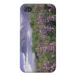 USA, Oregon, Nesika Beach. Lupine and Oregon iPhone 4 Covers