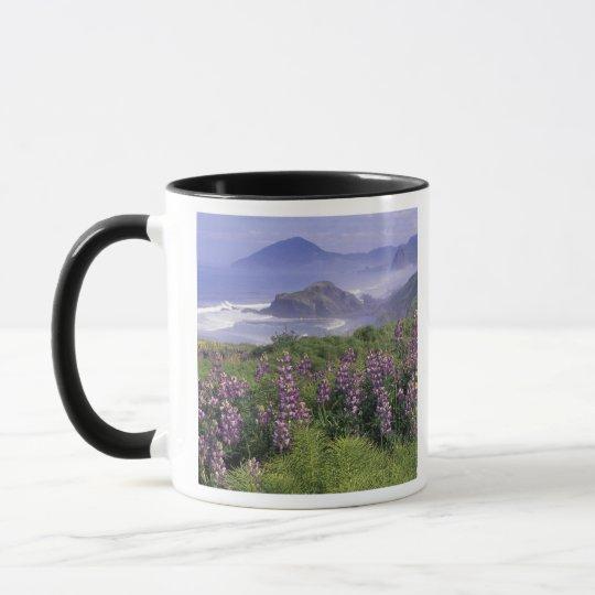 USA, Oregon, Nesika Beach. Lupine and Oregon Mug
