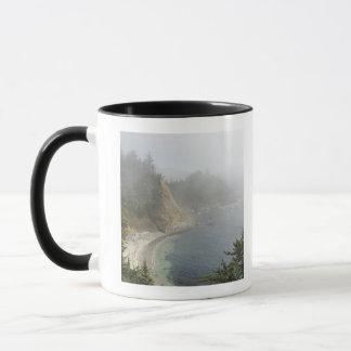USA, Oregon, Ocean View, Cape Arago, Bandon Mug