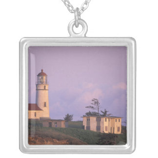 USA, Oregon, Port Orford Region, Cape Blanco Silver Plated Necklace