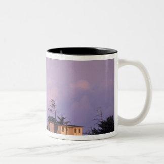 USA, Oregon, Port Orford Region, Cape Blanco Two-Tone Coffee Mug