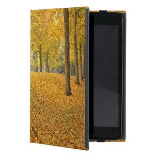 USA, Oregon, Portland. American Linden Trees Cases For iPad Mini
