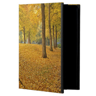 USA, Oregon, Portland. American Linden Trees Cover For iPad Air