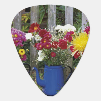 USA, Oregon, Portland. Antique enamelware Plectrum