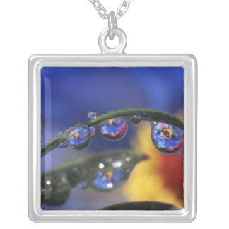 USA, Oregon, Portland, Close-up of ladybird Silver Plated Necklace