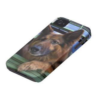 USA, Oregon, Portland. Griff the long-hair Case-Mate iPhone 4 Cases