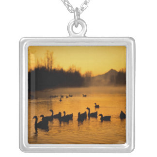 USA, Oregon, Portland. Waterfowl in Columbia Silver Plated Necklace