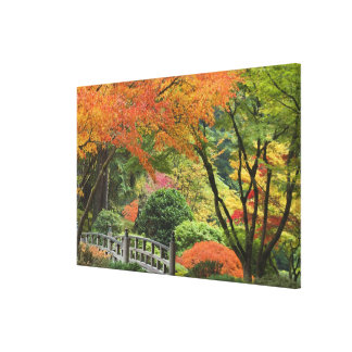 USA, Oregon, Portland. Wooden bridge and maple Canvas Print