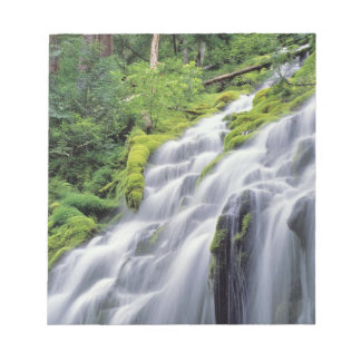 USA, Oregon, Proxy Falls. Proxy Falls rushes Notepad