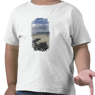 USA, Oregon, Sand Dunes and Ocean, Pacific City 2 Tshirt