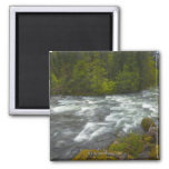 USA, Oregon, Scenic view of Santiam River Fridge Magnet