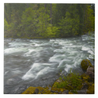 USA, Oregon, Scenic view of Santiam River Tile