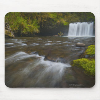 USA, Oregon, Scenic view of Upper Butte Creek Mouse Pad