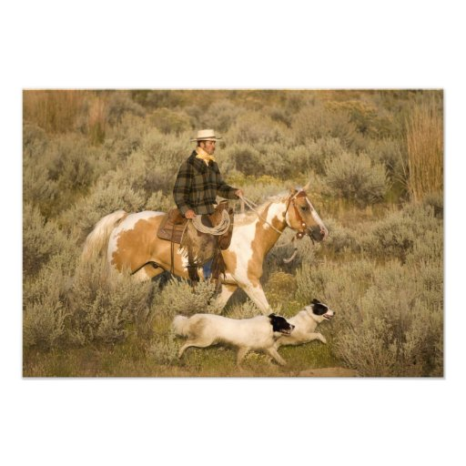 USA, Oregon, Seneca, Ponderosa Ranch. A cowboy Photo Art