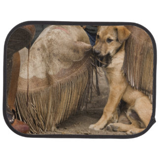 USA, Oregon, Seneca, Ponderosa Ranch. A puppy Car Mat
