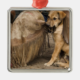 USA, Oregon, Seneca, Ponderosa Ranch. A puppy Christmas Ornament