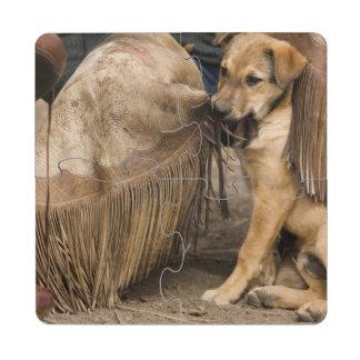 USA, Oregon, Seneca, Ponderosa Ranch. A puppy Puzzle Coaster