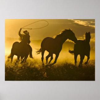 USA, Oregon, Seneca, Ponderosa Ranch. Poster