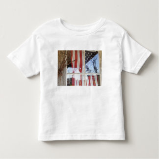 USA, Oregon, Shaniko. Flag in window next to Toddler T-Shirt