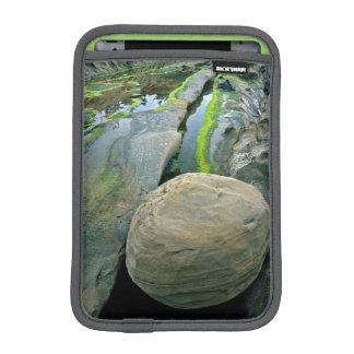 USA, Oregon, Shore Acres State Park iPad Mini Sleeves