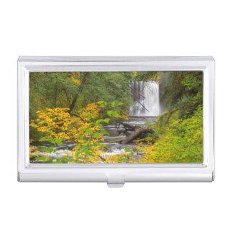 USA, Oregon, Silver Falls State Park 2 Business Card Holder
