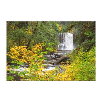 USA, Oregon, Silver Falls State Park 2 Canvas Print