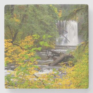 USA, Oregon, Silver Falls State Park 2 Stone Coaster