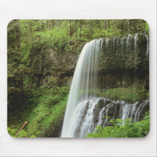 USA, Oregon, Silver Falls State Park. Lower Mouse Pad