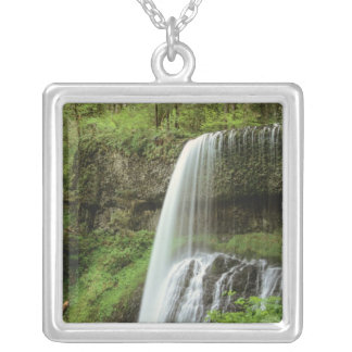 USA, Oregon, Silver Falls State Park. Lower Silver Plated Necklace