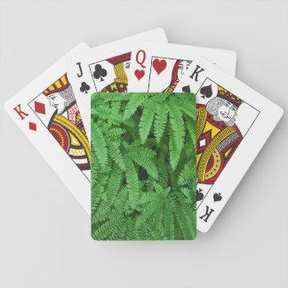 USA, Oregon, Silverton. Maidenhair Ferns Poker Cards
