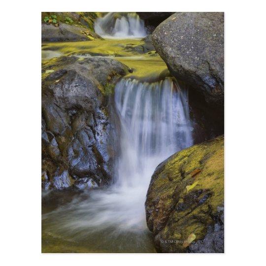 USA, Oregon, small waterfall Postcard