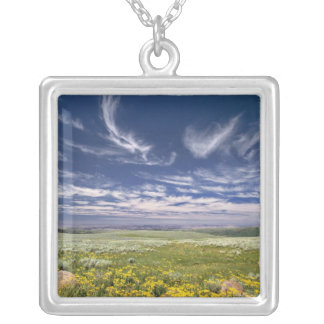 USA, Oregon, Steens Mountain. Spring burgeons Silver Plated Necklace