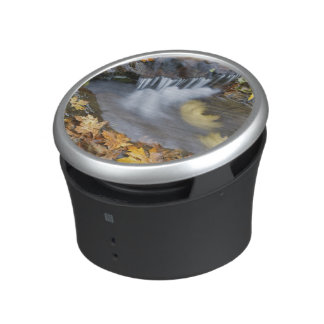 USA, Oregon, Sweet Creek. Fallen maple leaves Bluetooth Speaker