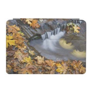 USA, Oregon, Sweet Creek. Fallen maple leaves iPad Mini Cover