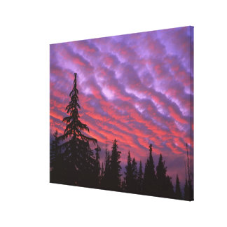 USA, Oregon, Three Sisters Wilderness, Vivid Canvas Print