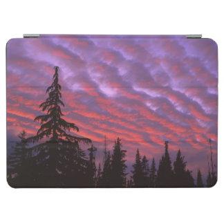 USA, Oregon, Three Sisters Wilderness, Vivid iPad Air Cover