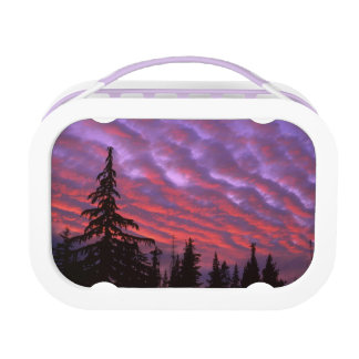 USA, Oregon, Three Sisters Wilderness, Vivid Lunch Box