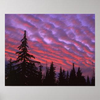 USA, Oregon, Three Sisters Wilderness, Vivid Poster