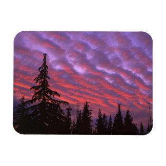 USA, Oregon, Three Sisters Wilderness, Vivid Rectangular Photo Magnet
