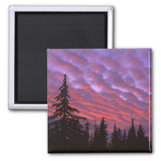 USA, Oregon, Three Sisters Wilderness, Vivid Square Magnet